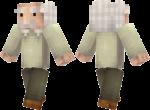 Albert-Einstein-Skin