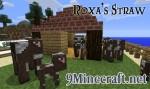 Roxa-Straw-Mod