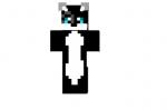 Black-kat-skin