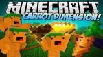 Carrot-dimension-mod