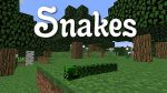 Snakes-Map