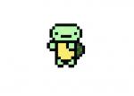 I-like-turtles-skin